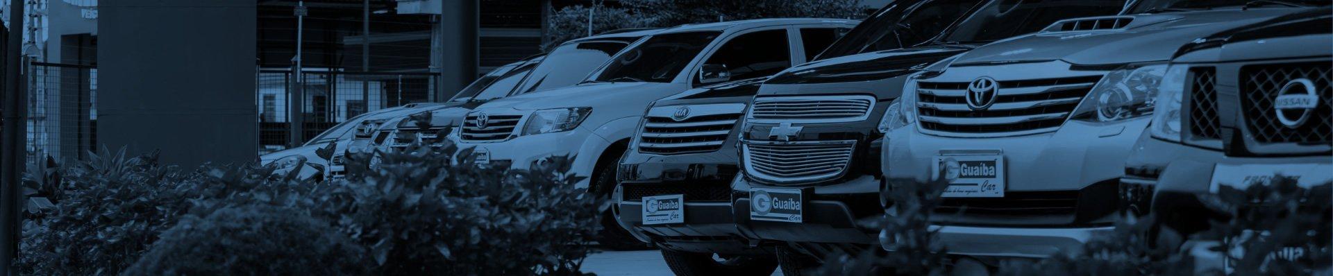 Banner Guaiba Car